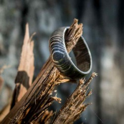 Forged Ring in Damascus Steel